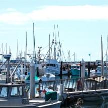 Breakwater-Restaurant-harbor-view3