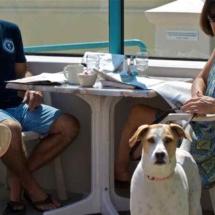 breakwater-restaurant-pet-friendly-dining